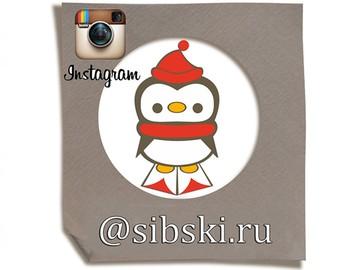 Клуб Пингвинята  - смотрите в Инстаграм @sibski.ru